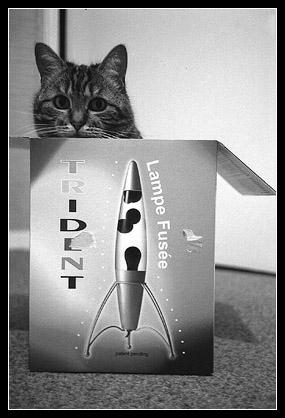 Abyss boîte lampe fusée